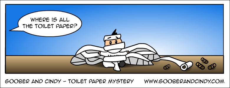 Toilet paper mystery