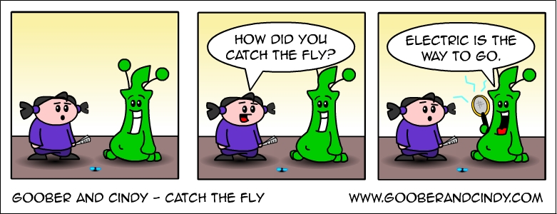 catch-the-fly